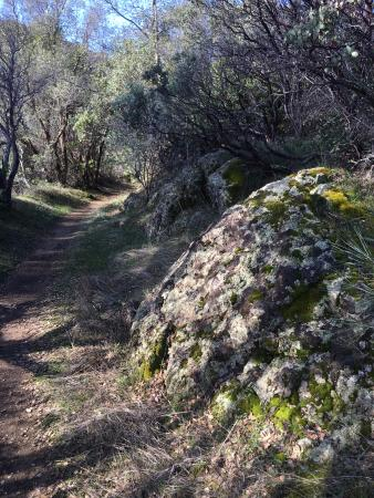 Whiskeytown, Kalifornien: More of the Oak Bottom Water Ditch trail