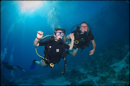 Eagle Divers Egypt: Learn to dive in Sharm el Sheikh