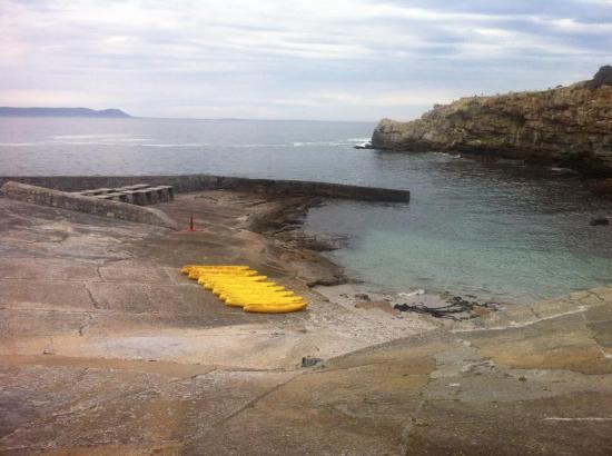 Hermanus, Sudáfrica: Kayaking for Whales
