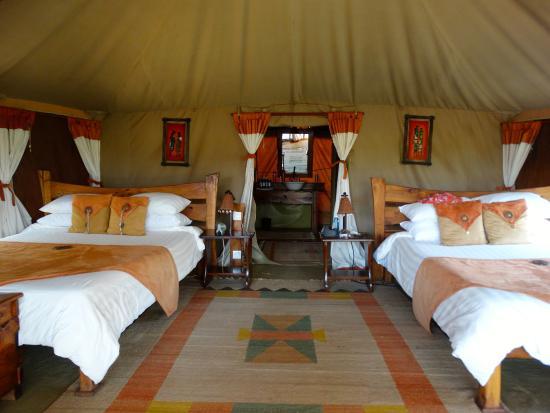 wildlife picture of elephant bedroom camp samburu