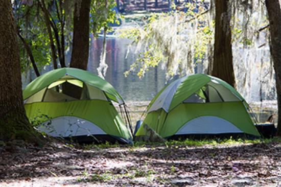Spirit of the Suwannee Music Park & Campground: Tent camping