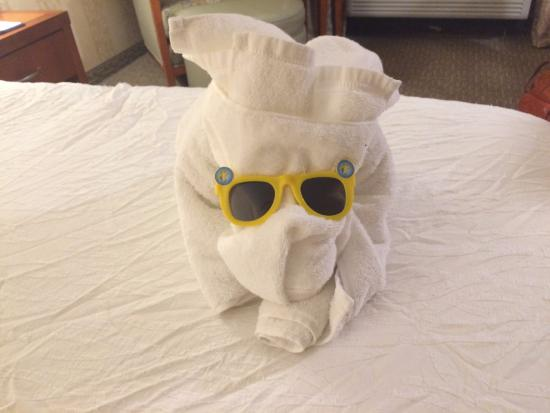 Hilton Garden Inn Lakewood: Cute towel animal on the bed- Thanks for the friendly welcome!