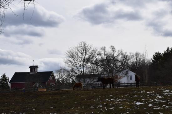Carlisle, MA: farm