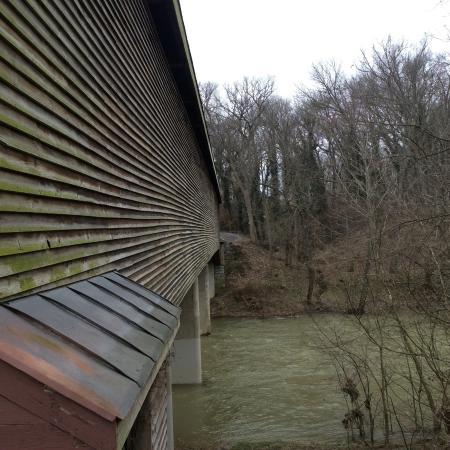 shenandoah river and other side of meems bottom bridge picture of rh tripadvisor co za