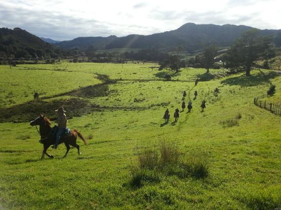 Whitestar Horse Treks