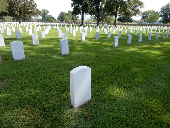 Port Hudson National Cemetery: View of cemetery