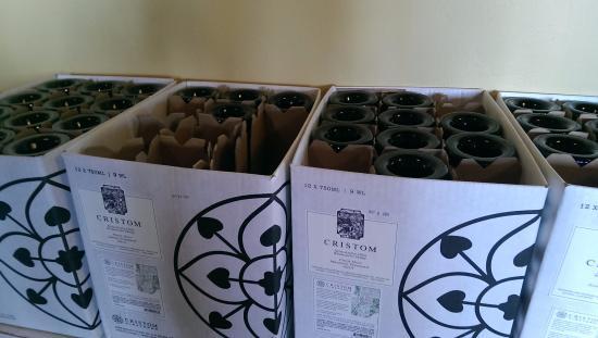 Cristom Vineyards: Plenty of Pinot!