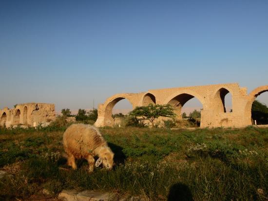 Shushtar, อิหร่าน: Дамба цезаря 3
