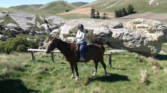 Weka Pass Horse Treks & Riding Centre