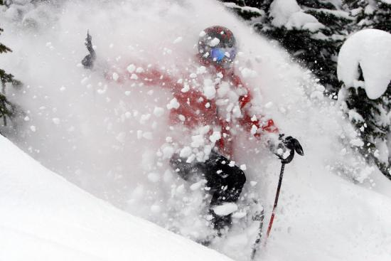 White Grizzly Cat Skiing: Deep light powder