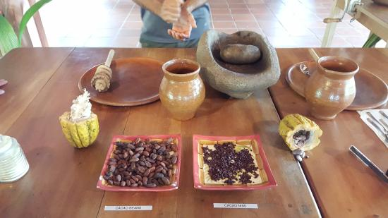 Finca Luna Nueva Lodge: chocolate tour, held in one of the common areas