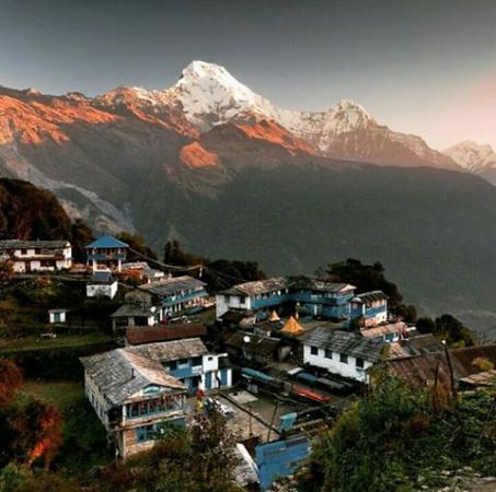 Mardi Himal Trek and Expedition Pvt. Ltd