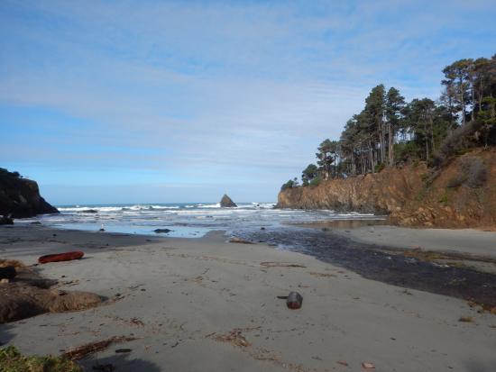 Zdjęcie Pine Beach Inn