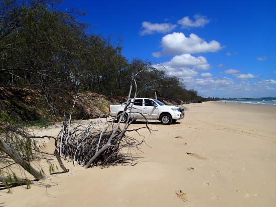Woodgate Beach Houses: You can drive up the Beach and back through the National Park which is stunning.