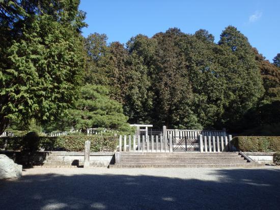 Tenchi Emperor's Mould