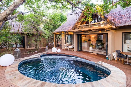 am lodge updated 2019 prices reviews hoedspruit south africa rh tripadvisor com