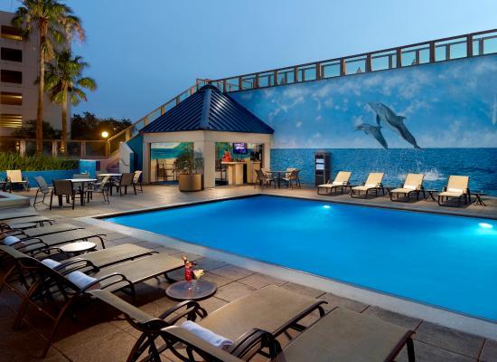 Omni Corpus Christi Hotel : Pool