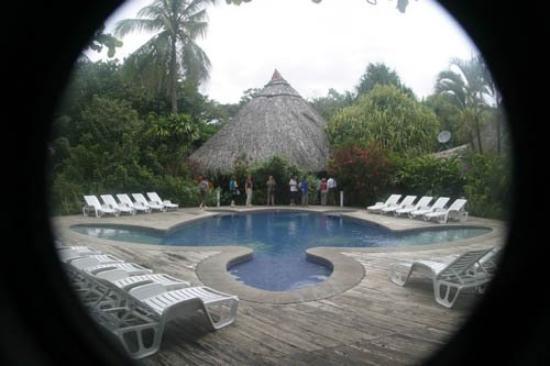 Turtle Beach Lodge: Turtle shaped pool