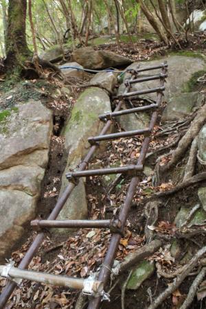 早速、梯子、ロープ渡りが、いくつも出現 序の口