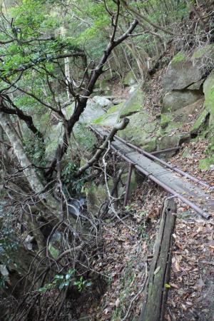 おぼつかない 渡り橋