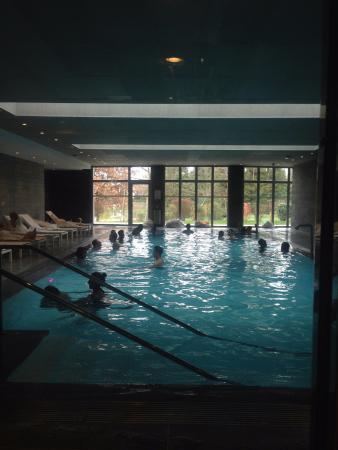 Crowne Plaza Paris - Charles de Gaulle: coin piscine-jacuzzi