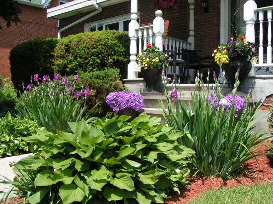 La Vita e Bella Bed & Breakfast: Front Garden