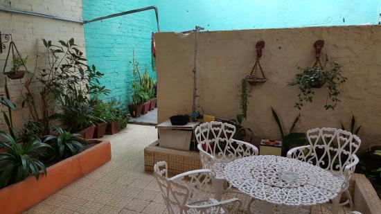 Casa Manolo: le patio