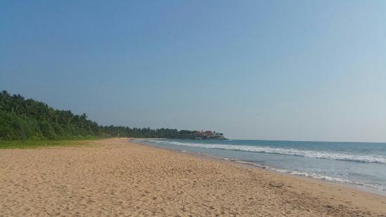 Bentota, Sri Lanka: IMG-20160224-WA0051_large.jpg