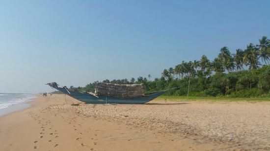 Bentota, Sri Lanka: IMG-20160224-WA0047_large.jpg