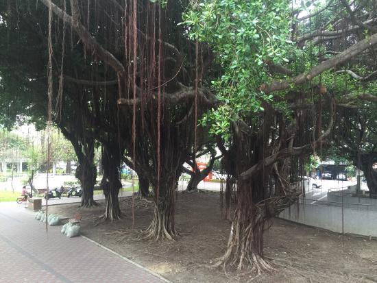Taichung Yingcai Kid's Park