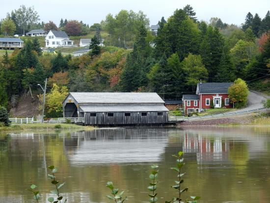 Char's Taxi & Bay of Fundy Tours