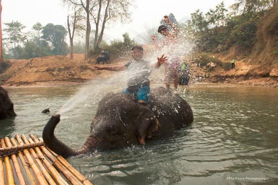 Mahawangchang Elephant Camp