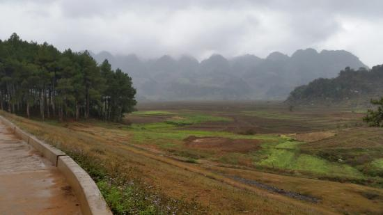 Moc Chau, Vietnam: view at the other end of the park