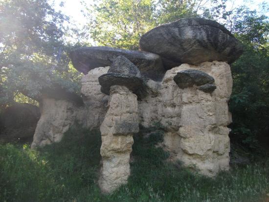 Riserva Naturale dei Ciciu del Villar: tutti oltre i 3 metri