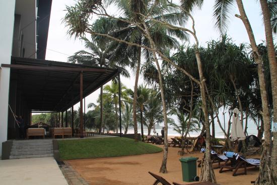 Pandanus Beach Resort & Spa : Strandnähe wortwörtlich.