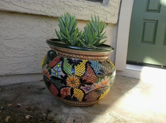 Tubac, AZ: multi colored planter I purchased at La Paloma