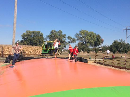 Burns, KS: Jumping pillow, combine, and corn maze behind.