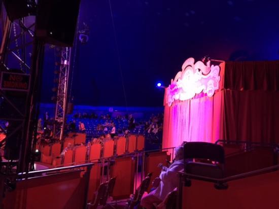 Circus Sarasota: Circus time!