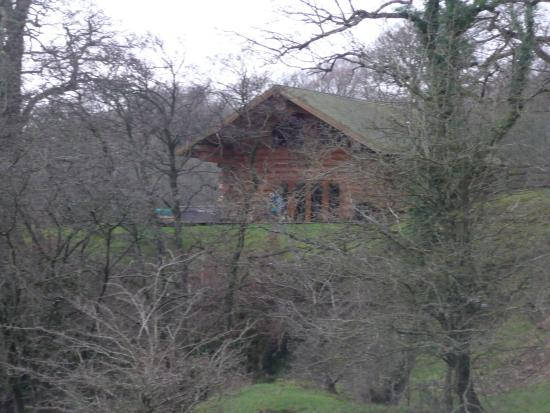 Longtown, UK: Roe Deer Cabin
