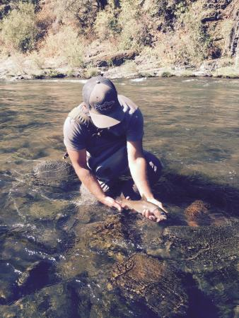 Capitola, CA: Fly fishing on the Pit River.  Nice Rainbow Trout!