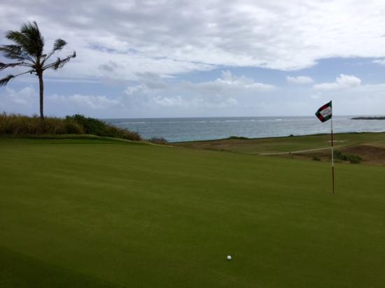 Costa Sur, Saint Kitts: Elevated green on 14th hole