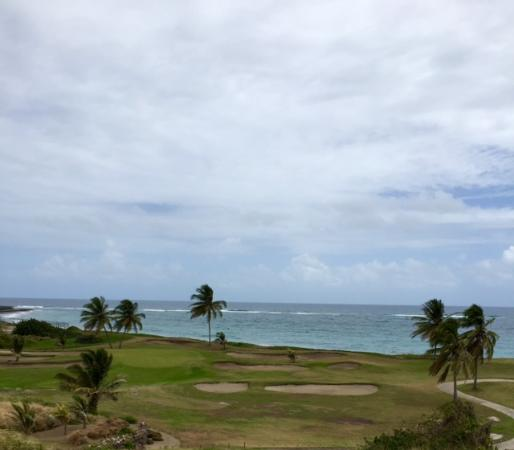 Costa Sur, Saint Kitts: Par 3 15th