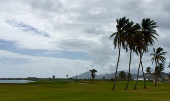 Costa Sur, Saint Kitts: Par 4 16th hole