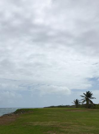 Costa Sur, Saint Kitts: Approach shot on par 4 17th hole