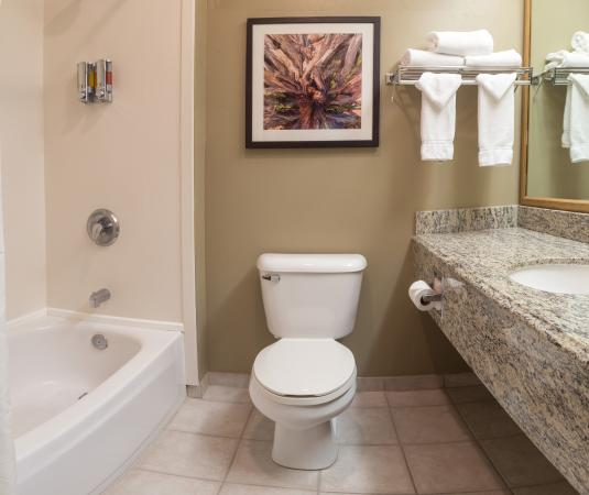Gray Wolf Inn and Suites : Gray Wolf Standard Bath