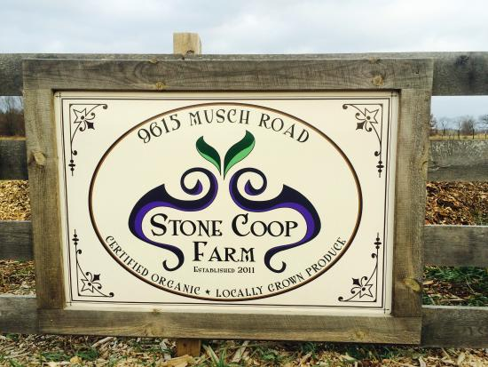 Brighton, MI: Welcome To Stone Coop Farm!