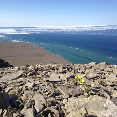 Arctic Watch Lodge張圖片