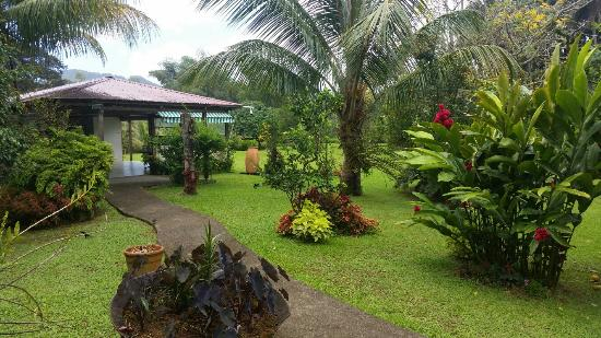 le jardin tropical photo de sgtm la chaudiere le morne