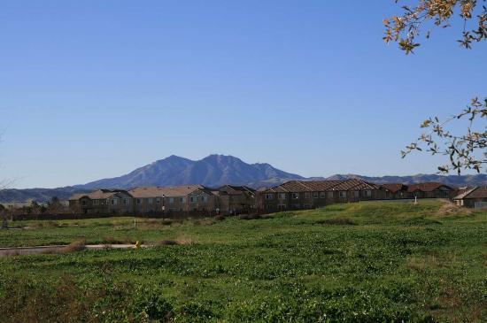 Brentwood, CA: View of Mt. Diablo