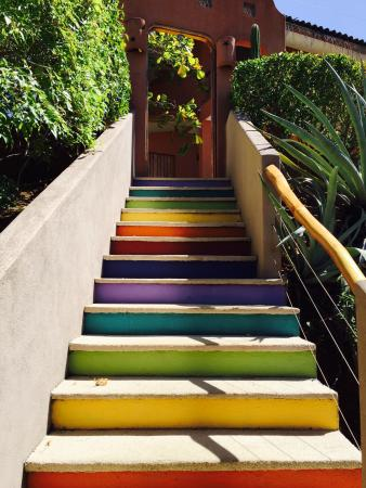 Colores del Pacifico